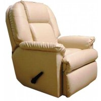Lounge Recliner 1